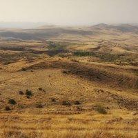 Кругом холмы ... :: Лариса Корж