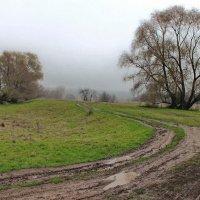 У ноября случайных нет дождей... :: Лесо-Вед (Баранов)