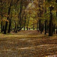... Пусть осень у двеpей... :: barsuk lesnoi