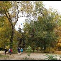 ОСЕНЬ. Листья желтые по городу кружатся...(3) :: Юрий ГУКОВЪ