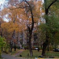 Мой осенний город :: Елена Семигина