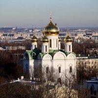 Екатерининский собор :: Ирина Фирсова