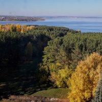 Жигулевское море :: Tata Wolf