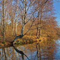 Осенний пейзаж :: Леонид Иванчук