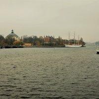 Стокгольм- ноябрьский день и тускл и мрачен :: Swetlana V