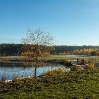 У леса на опушке. :: Yuri Chudnovetz