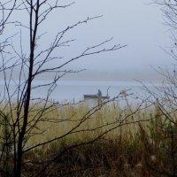 В тумане... :: Галина Полина