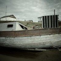 На чукотских берегах :: Алексей Авдеев