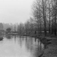 В одиночестве на природе :: Николай Мартынов