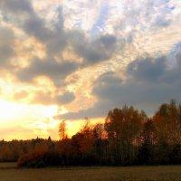 Осень на закате. :: Николай Ярёменко