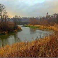 Серый подмосковный ноябрь :: Вячеслав Минаев