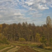 Картинки осени :: Ольга Винницкая (Olenka)