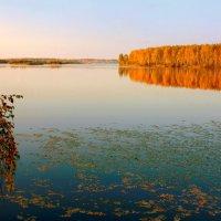 Последний вальс осенних листьев... :: Нэля Лысенко