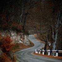 осенняя дорога :: Hayk Nazaretyan