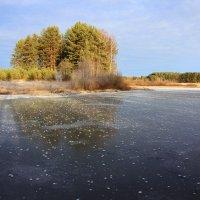 Холодная , ледяная осень... :: Александр Широнин