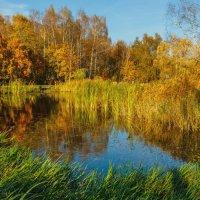Воспоминание о прекрасной поре. :: Николай Кондаков