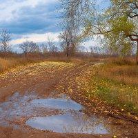 Осень бывает дождливой :: Любовь Потеряхина