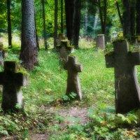 Старое кладбище :: Павел