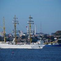 Прощай, Владивосток :: Ирина Червинская