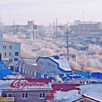 Изморозь :: Андрей Самуйлов