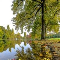 осень в Булонском лесу :: Георгий А