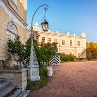 Дворец, лев и фонарь в Павловске :: Юлия Батурина