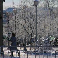 Зима в городе :: Екатерина Торганская