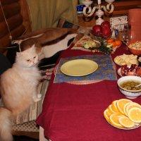 Без кота и жизнь не та. :: Венера Чуйкова