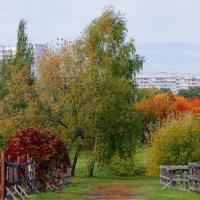 Осень. :: Наталья Соколова