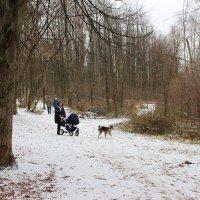 Первый снег :: Людмила Монахова