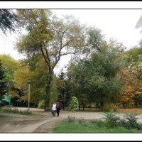 Спокойная прогулка по осеннему парку. :: Юрий ГУКОВЪ