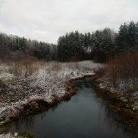Припорошило белым снегом... :: Елена Павлова (Смолова)