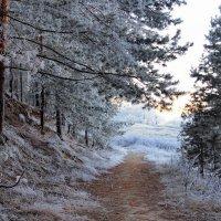 С морозцем юным встретилась дорога... :: Лесо-Вед (Баранов)