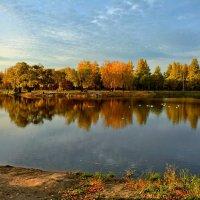 Октябрь на пруду :: Mikhail Irtyshskiy