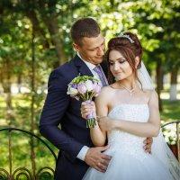 Свадебные фото  Климовичи :: Евгений Третьяков