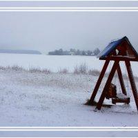 Снег,самый первый... :: Александр Широнин