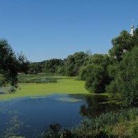 Монастырский пруд :: Grey Bishop
