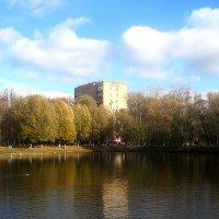 На городском озере :: Елена Семигина