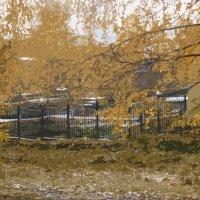 осенний парк :: павел бритшев