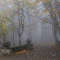 Осеннее.......... :: Юрий Цыплятников