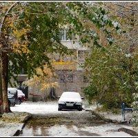 Первый снег... :: ИгорьОк Бородин