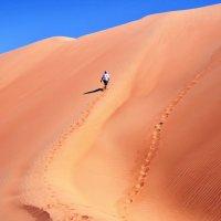 самая высокая дюна в пустыни :: Георгий А