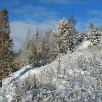 Первый снег :: Leonid Rutov