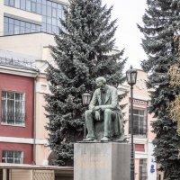 Памятник И.С. Никитину :: Евгений Мухин