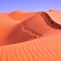 розовые оттенки дюн :: Георгий А