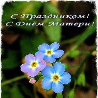 Мамы, будущие мамы и бабушки, с праздником вас! С Днём матери! :: Лия ☼