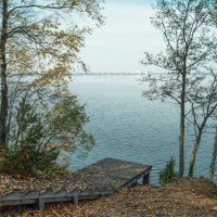 Осень на берегу озера Разлив (04) :: Виталий