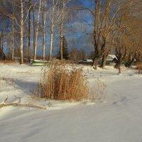 В объятьях снежных тополя... :: Нэля Лысенко