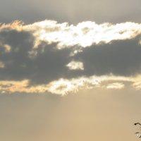 Солнце и облако. :: Валерьян Запорожченко