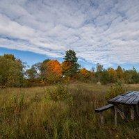 Осенний пейзаж. :: Елена Струкова